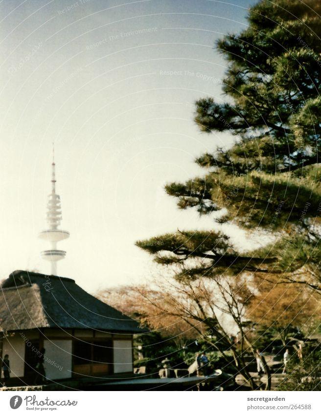 stilles örtchen. Erholung ruhig Häusliches Leben Haus Natur Wolkenloser Himmel Frühling Sommer Schönes Wetter Wärme Pflanze Baum Sträucher Garten Park Hamburg