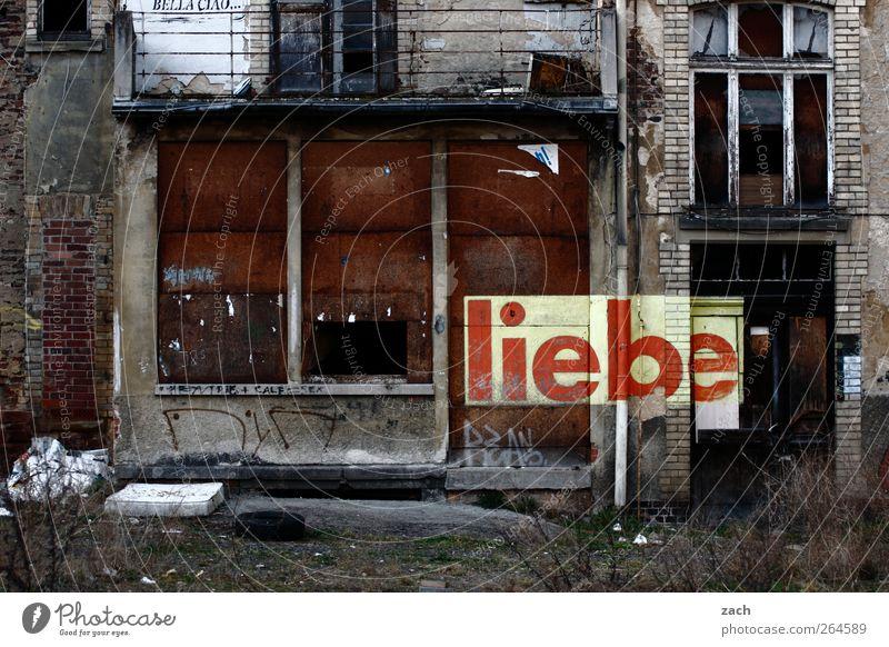 trotz allem Haus Garten Renovieren Gras Sträucher Gießen Menschenleer Ruine Fassade Zeichen Schriftzeichen Graffiti Häusliches Leben kaputt braun