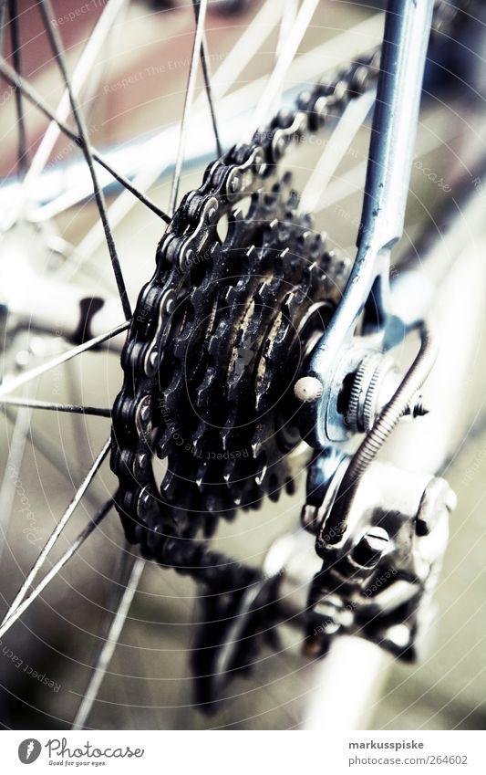 urbane mobilität - biciclette chesini Stadt Sommer Straße Wege & Pfade Stil Fahrrad elegant Design Lifestyle retro fahren Fitness Vergangenheit Mobilität trendy Stadtzentrum