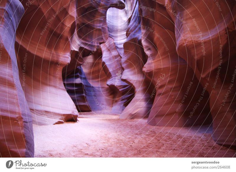 Antelope Canyon - Upper Canyon Natur Farbe Landschaft träumen braun außergewöhnlich ästhetisch rein fantastisch entdecken bizarr Surrealismus Schlucht Sinnesorgane Felsspalten Sandstein