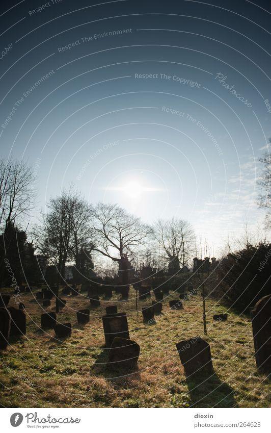 Es wird ein sonniger Tag! Himmel alt Sonne Tod Gras Stein Traurigkeit hell Wetter authentisch Trauer Vergänglichkeit Schönes Wetter gruselig Sehenswürdigkeit