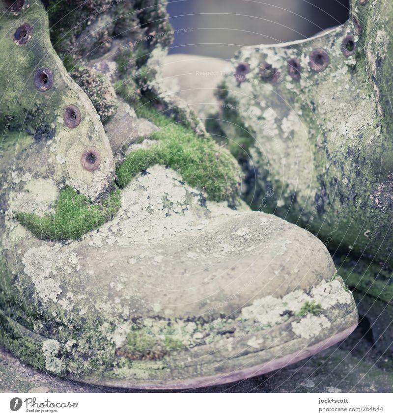Schuhe verwittert und mit Moos bewachsen Kunst Leder Stiefel Sammlerstück alt Wachstum retro grün Kreativität Kultur skurril Vergänglichkeit verfallen Öse Rost