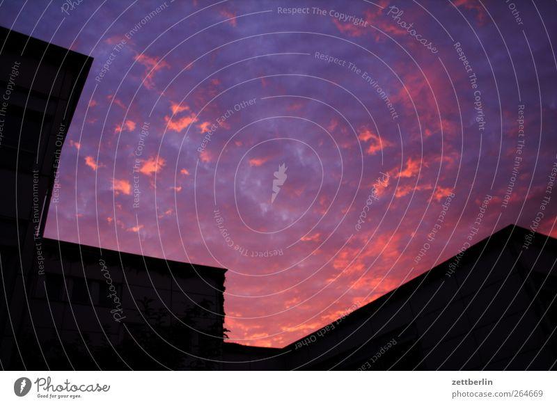 Himmel am Abend Umwelt Natur Wolken Sonne Sonnenaufgang Sonnenuntergang gut Abenddämmerung Farbfoto mehrfarbig Außenaufnahme Menschenleer Textfreiraum links