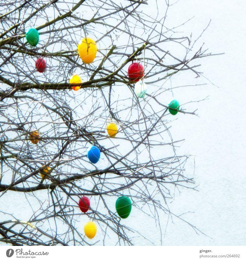 Es ostert heftigst !!! Baum dunkel Wand klein hell Feste & Feiern groß Dekoration & Verzierung Schnur Ostern Kitsch Zeichen Verschiedenheit Zweige u. Äste