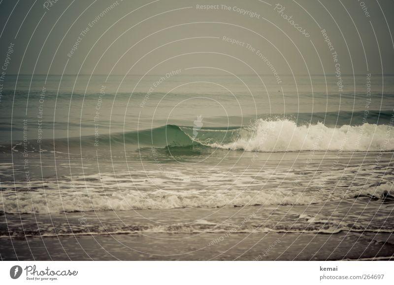 Schlechtwetterwelle Ferien & Urlaub & Reisen Sommer Sommerurlaub Strand Meer Wellen Wasser kalt nass Gischt brechen Farbfoto Gedeckte Farben Außenaufnahme