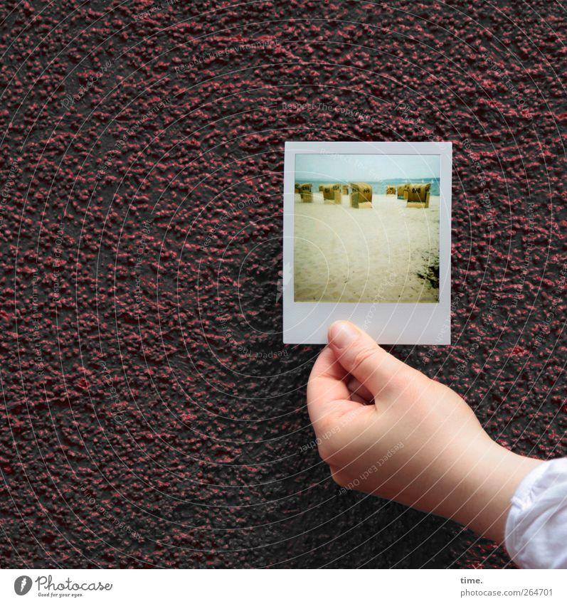 KI09 | let's heading for the secrets in that garden overthere feminin Hand 1 Mensch Mauer Wand Fassade Dienstleistungsgewerbe Fotografie Strand Polaroid