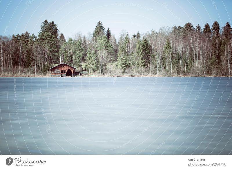 See im Winterschlaf Umwelt Natur Landschaft Wald blau braun grau grün Allgäu Hopfensee Waldrand Hütte Eisfläche kalt Farbfoto Gedeckte Farben Außenaufnahme