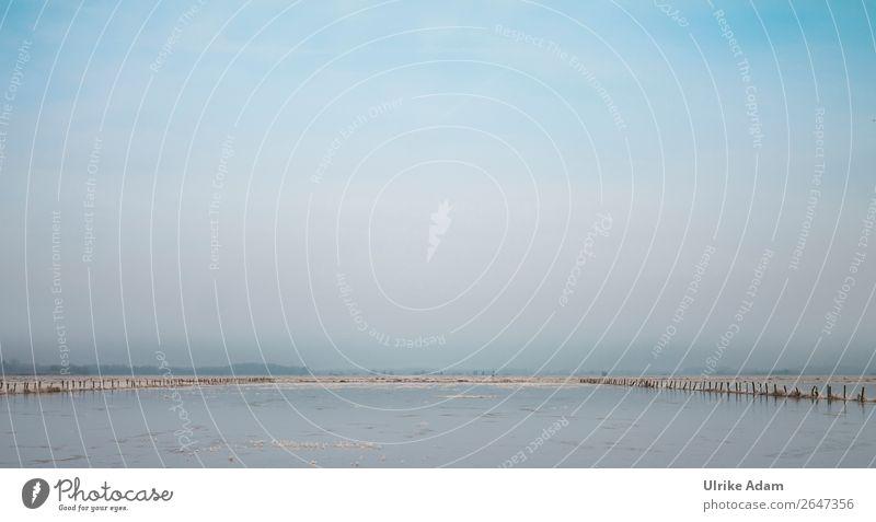 Überschwemmung im Teufelsmoor Himmel Ferien & Urlaub & Reisen blau Landschaft Erholung Winter Ferne kalt Schnee Freiheit Horizont Eis Schönes Wetter Urelemente