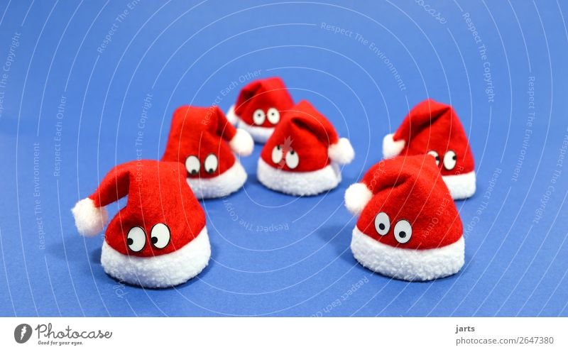 weihnachtsteam blau V Mütze außergewöhnlich niedlich rot weiß Nikolausmütze nachdenklich Auge Weihnachtsdekoration Farbfoto Studioaufnahme Nahaufnahme