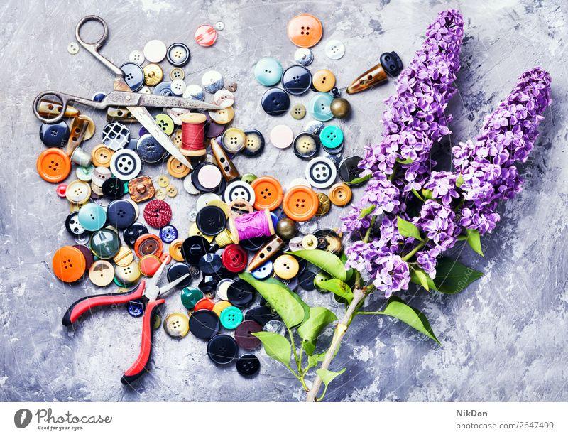 Helle Knöpfe und fliederfarbener Zweig Schaltfläche Herstellung Faser Nähen Handwerk Werkzeug nähen Handarbeit Blume Fliederbusch purpur handgefertigt Spule