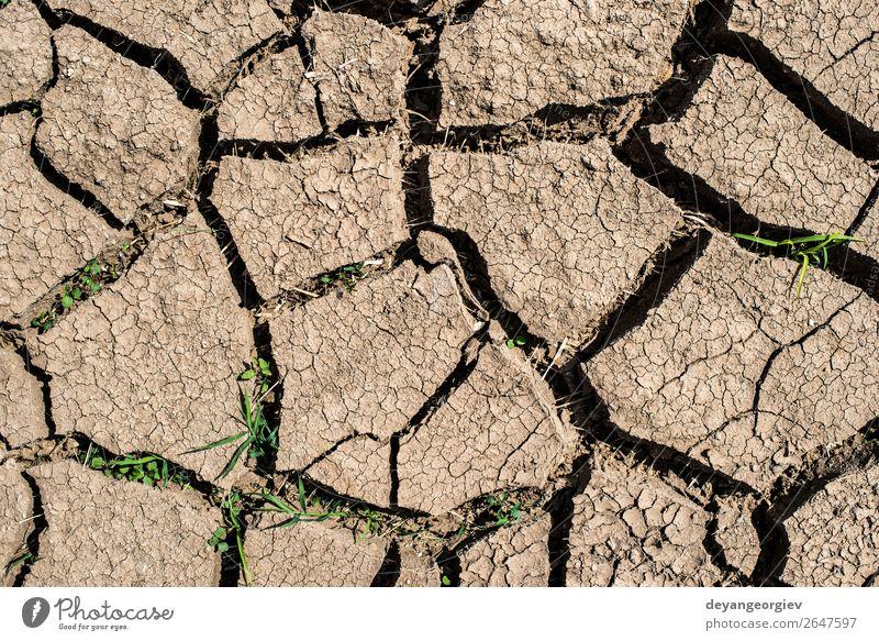 Gerissener Boden Sommer Umwelt Natur Erde Klima Dürre Armut heiß natürlich Tod Desaster Riss trocknen Land wüst Hintergrund Wasser Schlamm Konsistenz Erwärmung