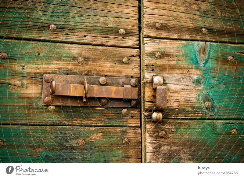 Türen öffnen Holz Metall alt braun grün Schloss Riegel Scheune Schuppentür Rost Abnutzung offen Stalltür Holztür Farbfoto Außenaufnahme Menschenleer