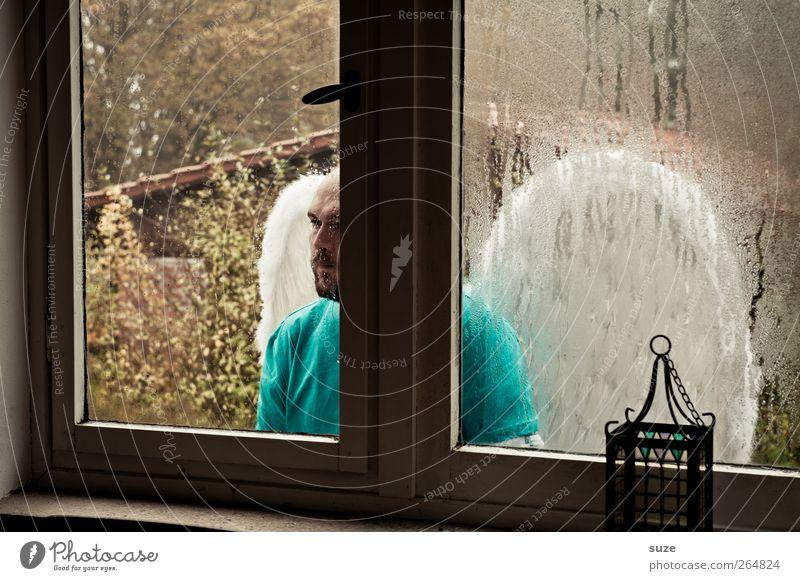 Engel Raum Mensch maskulin Mann Erwachsene 1 Fenster Flügel Glas Traurigkeit außergewöhnlich Hoffnung Trauer Glaube Religion & Glaube Schutzengel Durchblick