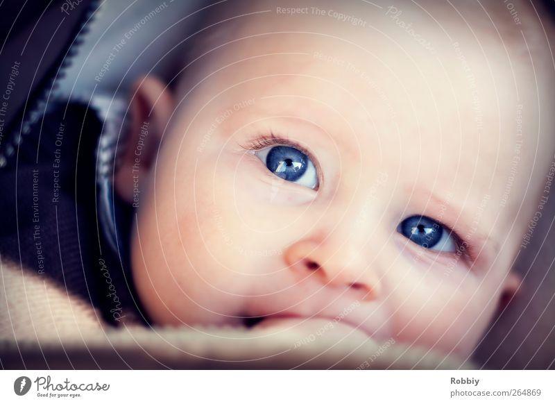 Na wer bist denn du? Mensch maskulin Baby Kindheit 1 0-12 Monate liegen Freundlichkeit Fröhlichkeit klein blau Menschlichkeit einzigartig Auge Gesicht