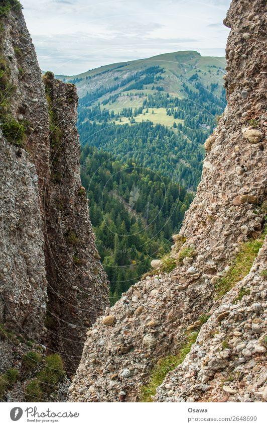 Nagelfluh Deutschland Allgäu Alpen Berge u. Gebirge Felsen Gebäude Gipfel Landschaft Nagelfluhkette wandern Bergsteigen Klettern Natur Alm Hochalpen Himmel