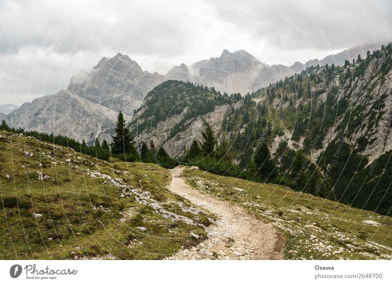 zur Pragser Hochalm Italien Südtirol Alpen Berge u. Gebirge Felsen Stein Gipfel Landschaft Dolomiten wandern Bergsteigen Klettern Natur unberührt Alm Wiese hoch