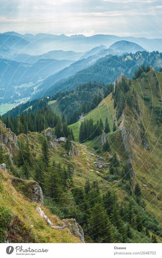 Nagelfluhkette Deutschland Allgäu Alpen Berge u. Gebirge Felsen Gebäude Gipfel Landschaft wandern Bergsteigen Klettern Natur Alm Hochalpen Himmel Sommer