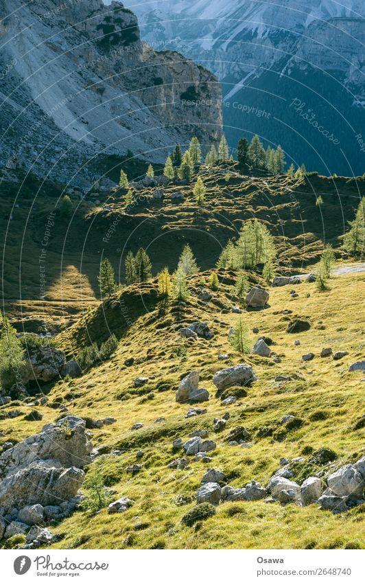 Südtirol Italien Alpen Berge u. Gebirge Felsen Stein Gipfel Landschaft Dolomiten wandern Bergsteigen Klettern Natur unberührt Alm Wiese hoch Hochalpen Himmel