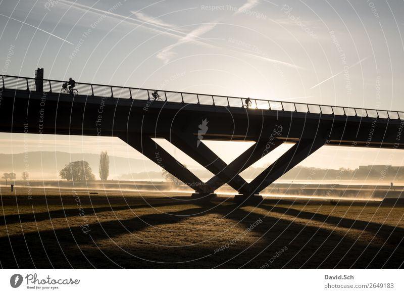 Radfahrer auf einer Brücke bei Sonnenaufgang und Nebel Fahrradfahren 3 Mensch Natur Landschaft Sonnenuntergang Herbst Schönes Wetter Baum Gras Wiese Dresden