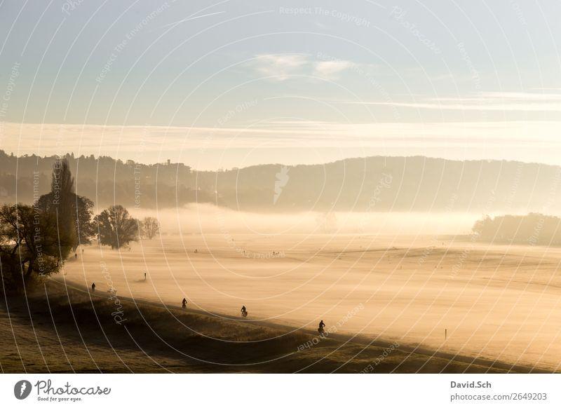 Fahrradfahrer auf dem Elbradweg bei Dresden am Morgen Fahrradfahren Mensch 4 Natur Landschaft Sonnenaufgang Sonnenuntergang Herbst Klima Nebel Wiese Verkehr