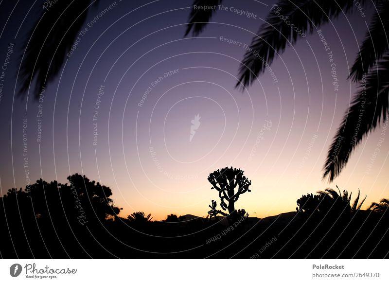 #AS# in the desert Kunst ästhetisch Silhouette Ferien & Urlaub & Reisen Urlaubsfoto Urlaubsstimmung Urlaubsort Urlaubsgrüße Wüste Wüstenpflanze abgelegen Idylle