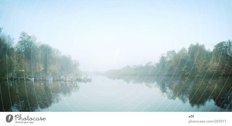 stille Natur blau Wasser Stadt grün Baum Pflanze ruhig Erholung Umwelt Landschaft kalt Herbst Stimmung Deutschland Wetter