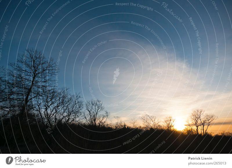 Nothing Else Matters Umwelt Natur Landschaft Urelemente Luft Himmel Wolken Sonne Sonnenaufgang Sonnenuntergang Sonnenlicht Frühling Klima Wetter Schönes Wetter