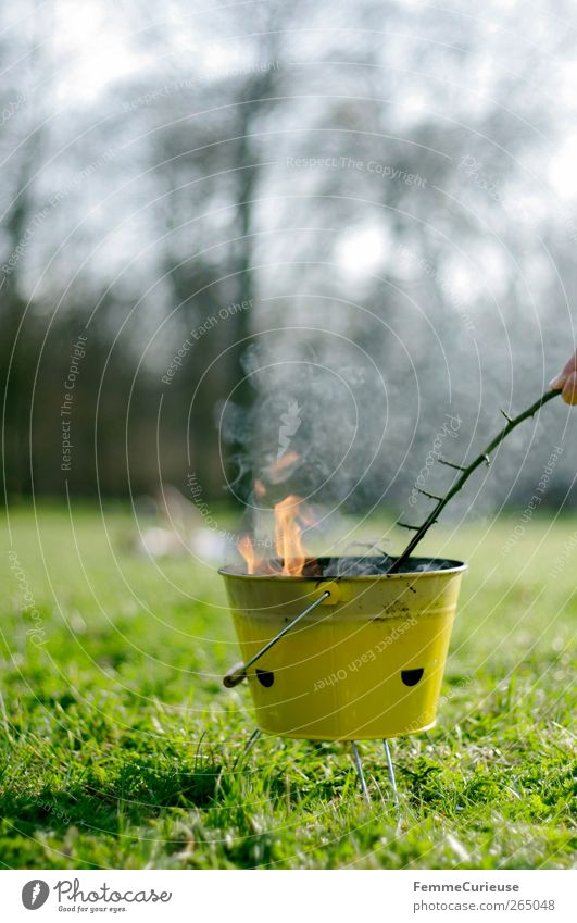Barbecue season. grün Baum gelb Wiese Gras Garten Park Freizeit & Hobby warten Abenteuer Feuer Ast festhalten Sportrasen Rauch Grillen
