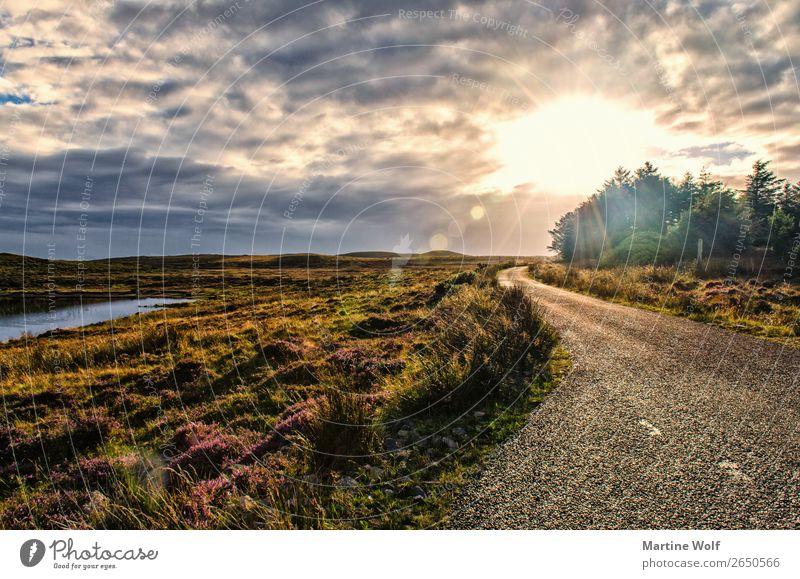 the road Umwelt Natur Landschaft Himmel Wolken Gras Schottland Großbritannien Europa Straße Ferien & Urlaub & Reisen ruhig Unendlichkeit Licht Farbfoto