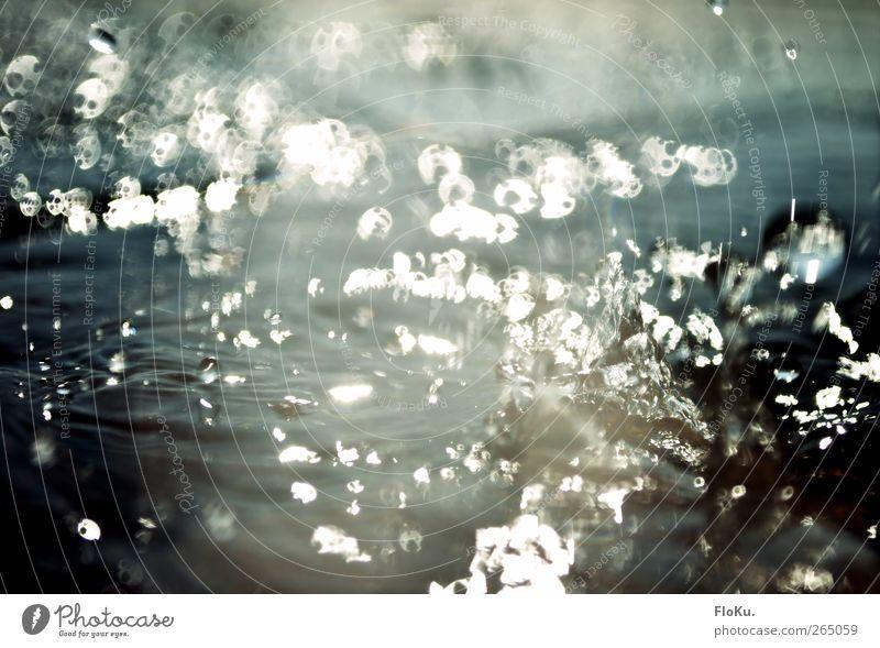 Plotsch Wasser Wassertropfen Sonnenlicht Regen Flüssigkeit glänzend nass wild Boden Tropfen spritzen feucht Geplätscher Pfütze Wasseroberfläche Farbfoto