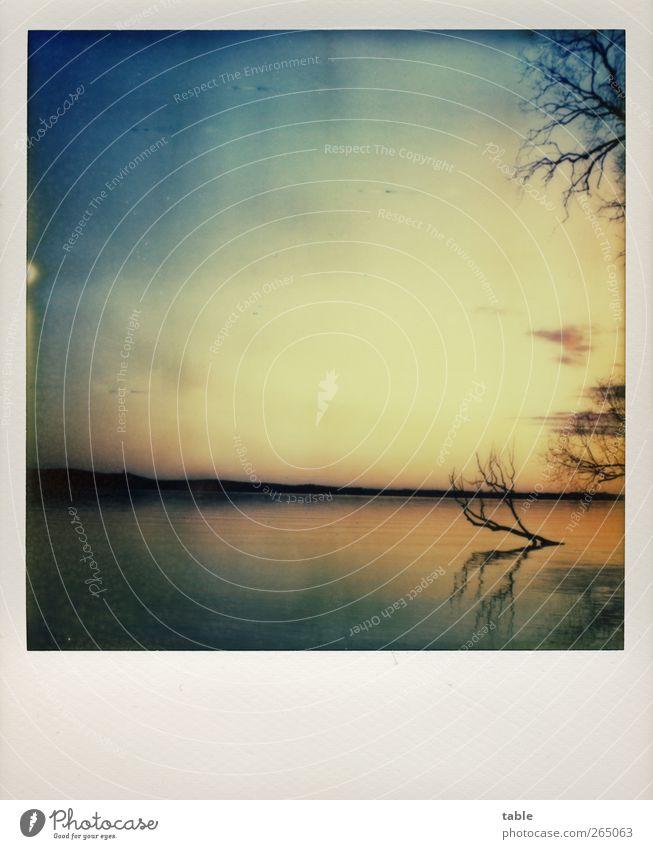 Stille Himmel Natur blau Wasser Baum Pflanze Winter Einsamkeit schwarz ruhig Ferne Erholung Umwelt Landschaft Herbst Gefühle