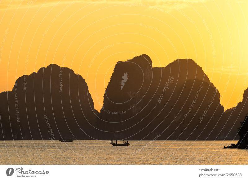 Halong Bay III Natur Landschaft Urelemente Wasser Himmel Sonne Sonnenaufgang Sonnenuntergang Sonnenlicht Schönes Wetter Hügel Felsen Küste Bucht Meer