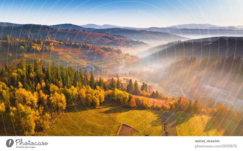 Schönes Morgenlicht durch Nebel und Wald schön Ferien & Urlaub & Reisen Ausflug Ferne Freiheit Berge u. Gebirge wandern Haus Umwelt Natur Landschaft Himmel