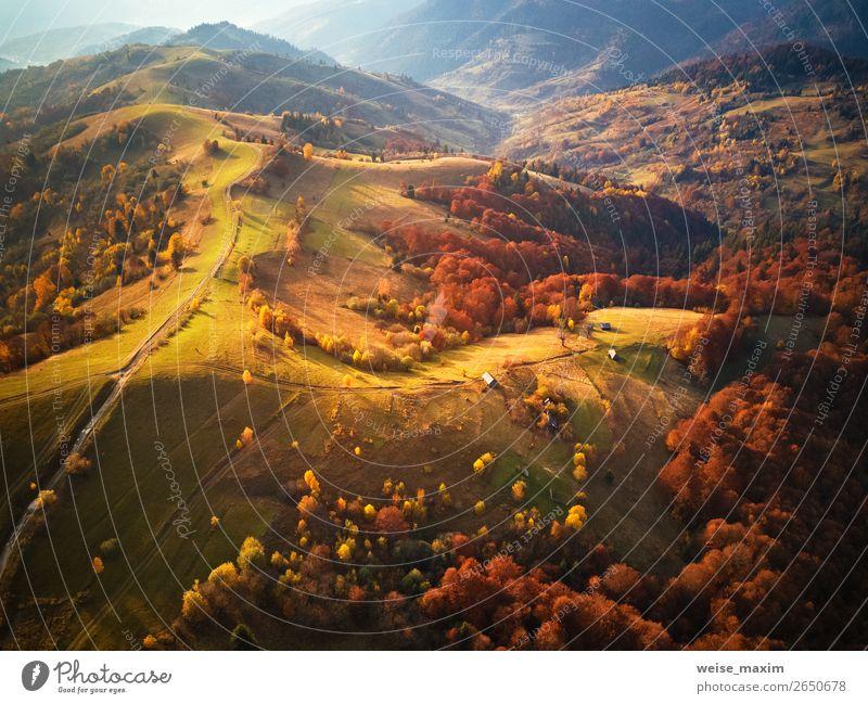 Ferien & Urlaub & Reisen Natur Landschaft rot Baum Wald Ferne Berge u. Gebirge Herbst gelb Umwelt natürlich Wege & Pfade Wiese Gras Tourismus