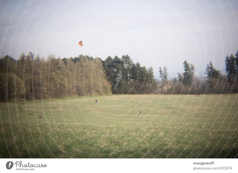 großer Drache Mensch Leben 4 Landschaft Wind Gras Park Wiese Feld Wien Steinhofgründe Erholung Spielen Drachenfliegen Lenkdrachen Kiter Gedeckte Farben