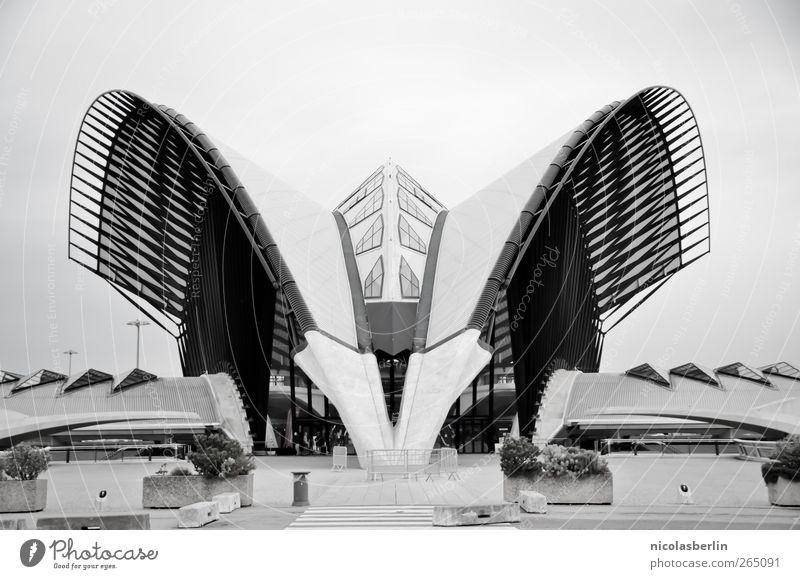 le monster Ferien & Urlaub & Reisen Abenteuer Sightseeing Städtereise Häusliches Leben Haus Traumhaus Kunst Architektur Wolkenloser Himmel Bahnhof Flughafen