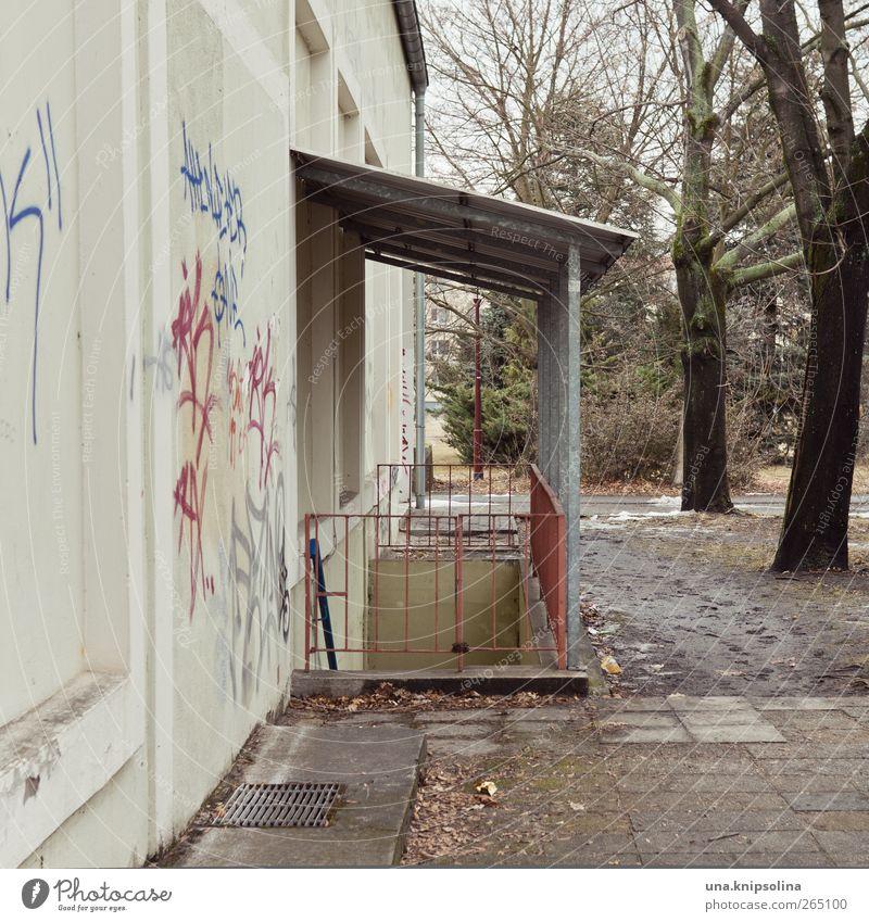 überdacht alt Stadt Baum Einsamkeit Umwelt Wand Gebäude Mauer eckig stagnierend Kleinstadt Zugang wettergeschützt Kellertreppe