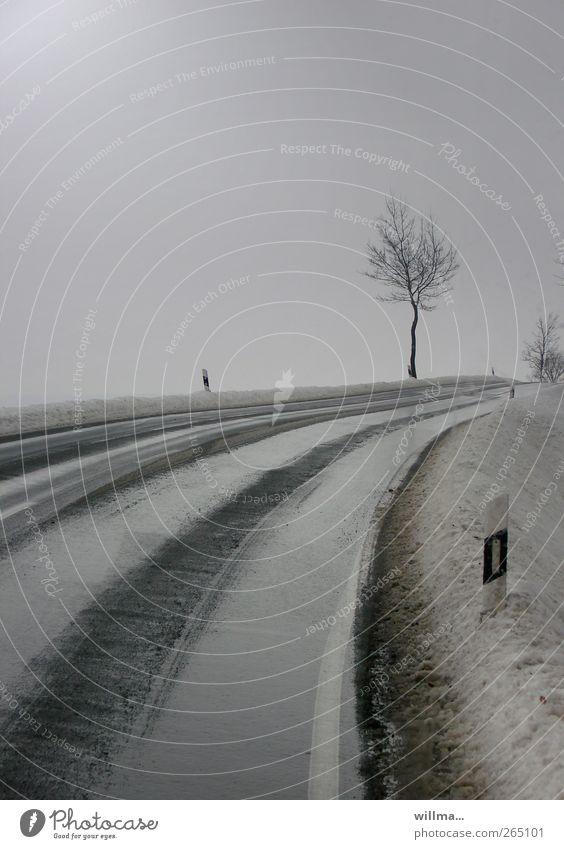 nüscht wie weg hier Baum Winter Straße kalt Schnee grau Regen Verkehrswege Kurve schlechtes Wetter Biegung bedeckt Verkehrsschild Straßenrand Landstraße