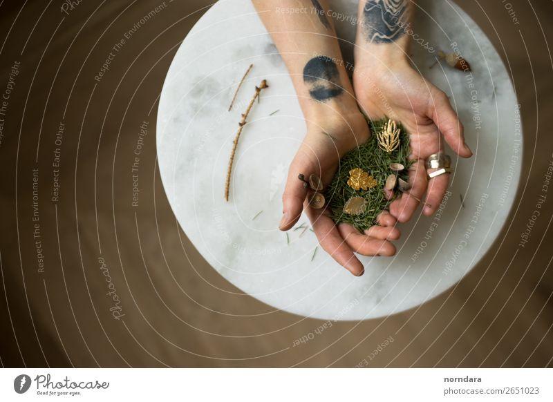 Hände und Accessoires Lifestyle kaufen Reichtum elegant Stil Design Hand Pflanze Blatt Grünpflanze Tanne Tannenzweig Schmuck Ring Tattoo Piercing Ohrringe
