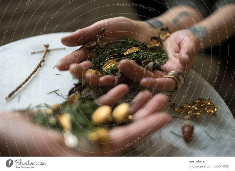 Wald in Händen Lifestyle kaufen elegant Stil Design Hand Finger 2 Mensch Natur Baum Blatt Grünpflanze Baumstamm Accessoire Schmuck Ring Tattoo Ohrringe Holz