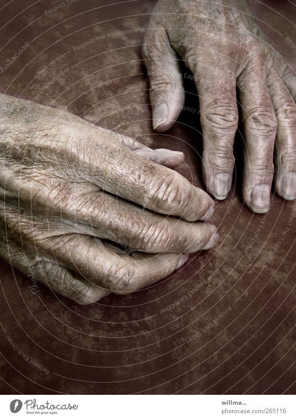 handzeichen alt Hand ruhig Erholung Senior Gesundheit Haut Finger Vergänglichkeit Hautfalten 60 und älter Großmutter Großvater Ruhestand altehrwürdig