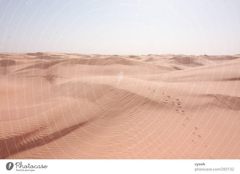 Den Spuren folgen... Natur Landschaft Sand Himmel Sommer Klima Klimawandel Schönes Wetter Wärme Dürre Wüste laufen wandern Ferne hell blau braun Kraft Mut