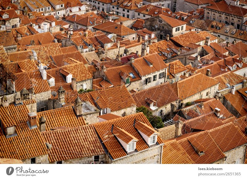 Detail of the orange roofs of Dubrovnik, Croatia Ferien & Urlaub & Reisen Tourismus Sightseeing Städtereise Winter Stadt Stadtzentrum Mauer Wand Dach