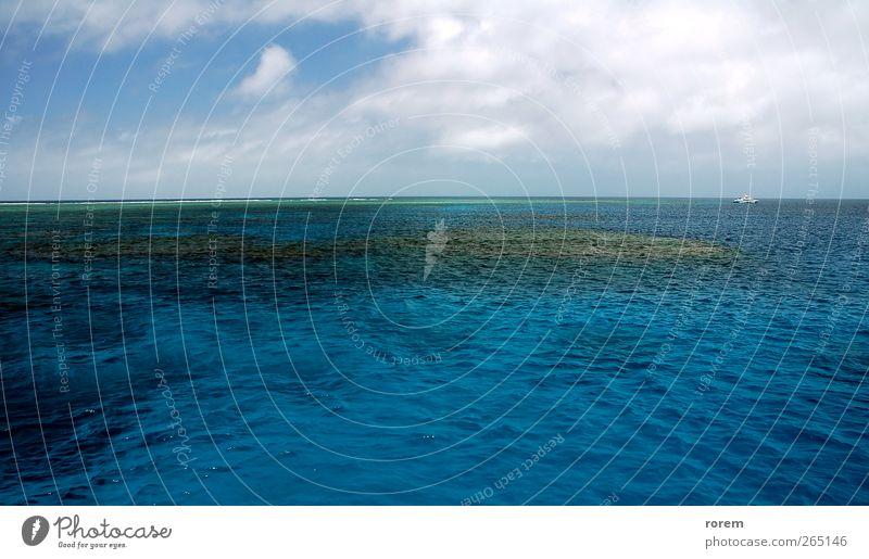 blau Ferien & Urlaub & Reisen Meer Ferne Ausflug tauchen Barriere Prima Kreuzfahrt Korallen Great Barrier Reef