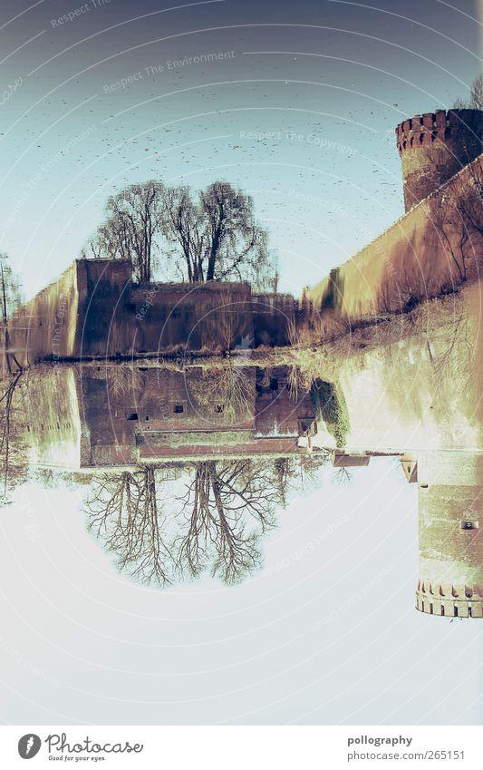 Geisterburg Himmel Natur Wasser Baum Pflanze Sommer Sonne Tier Blatt Wand Berlin Mauer Sand Gebäude See Vogel