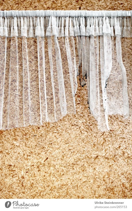 Restmüll / UT Winterthur Haus Renovieren Innenarchitektur Dekoration & Verzierung Holz Kunststoff hängen Häusliches Leben alt hässlich Verfall Vergangenheit
