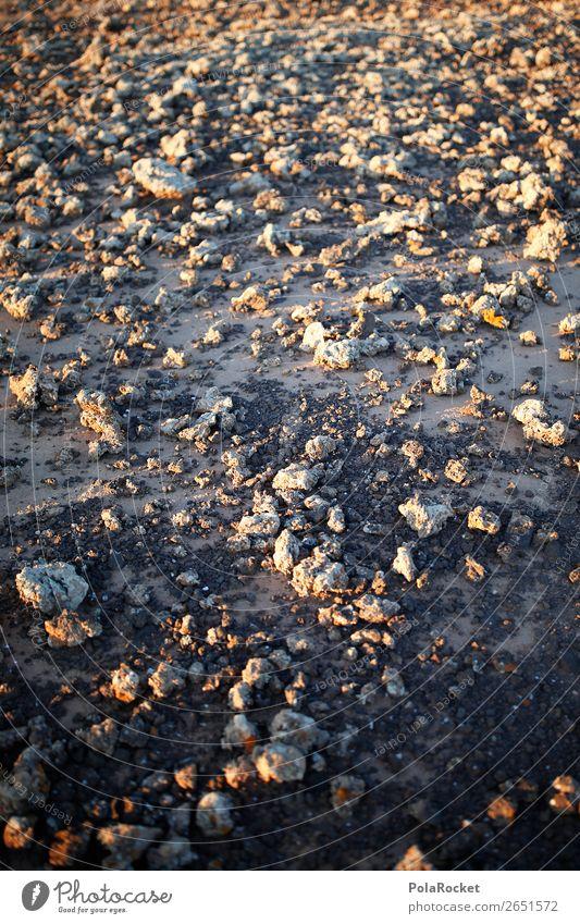 #AS# ground control Umwelt Natur Landschaft ästhetisch Mars Marslandschaft Marsianer karg Oberfläche Oberflächenstruktur Boden Erde Fuerteventura fremd falsch