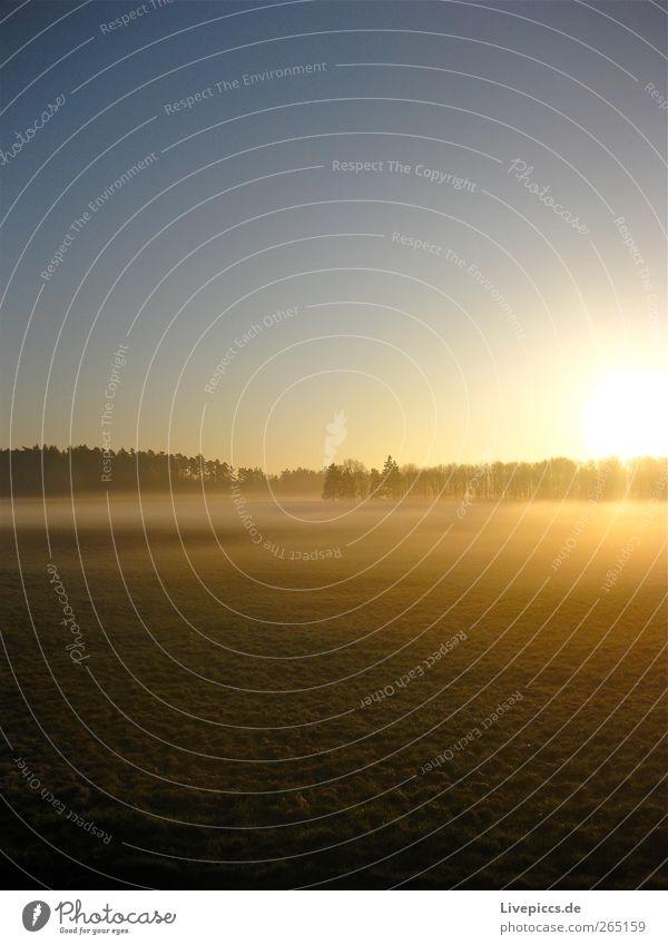 Seenplatte 1 Natur Landschaft Wolkenloser Himmel Sonne Sonnenaufgang Sonnenuntergang Sonnenlicht Frühling Schönes Wetter Nebel Pflanze Baum Feld ruhig
