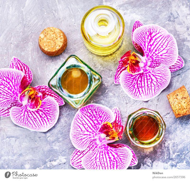 Extraktion von Blumen-Orchideen Essenz Flasche Aromatherapie Erdöl notwendig natürlich Kräuterbuch Gesundheit Wellness Schönheit Glas Behandlung Therapie frisch