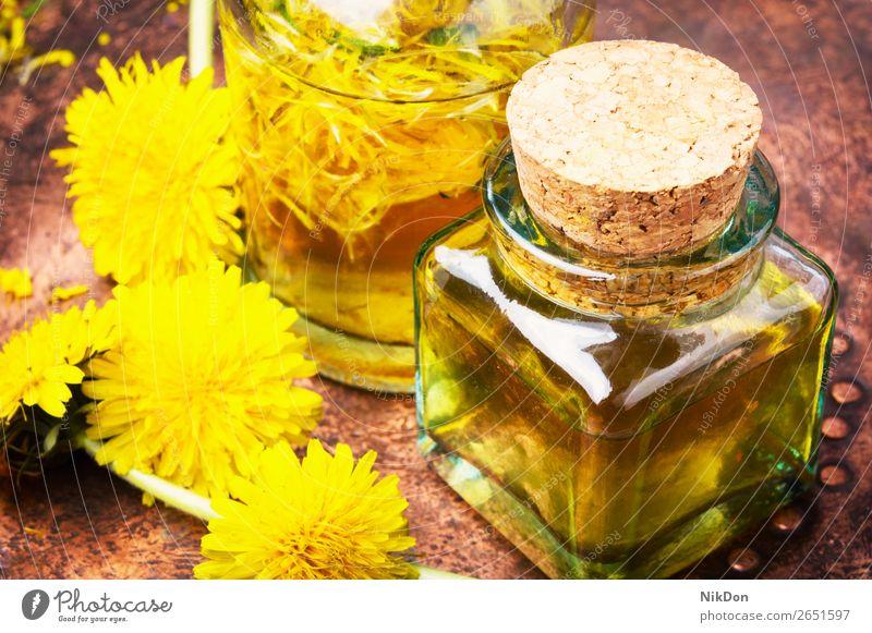 Extraktion von Blumenlöwenzahn Blühend Löwenzähne Essenz Flasche Aromatherapie gelb Kräuterkundige Erdöl notwendig natürlich Kräuterbuch Gesundheit Medizin
